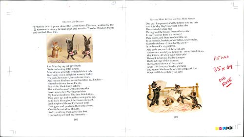 Vintage photo of A poem about the Great Kitten Dilemma.