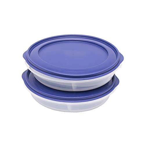 Store and Serve AirTight Partitioned Container for Storage   Refrigerator   Tiffin/Lunch Box   Carry Along   Kid Friendly   Microwave Safe   Dishwasher Safe   Set of 2 (1200 ml), Blue Price & Reviews