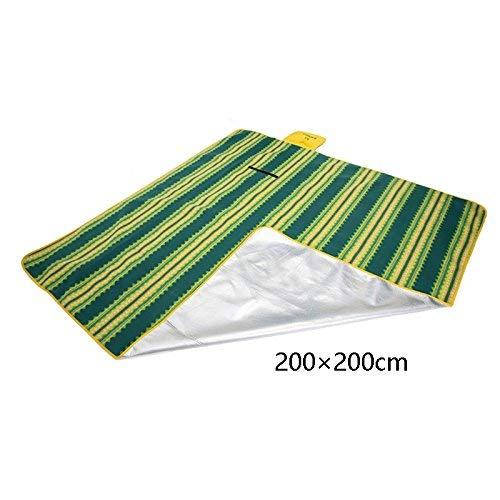 AXCJ Faltbare Picknick-Matte Portable Moistureproof Pad Pad Pad Beach Blanket Tuch Schlafen Teppich Widen Teppich Outdoor Fleece Pe Aluminiumfolie 200 & Times; 200Cm B07J4MQBCN   Überlegene Qualität  d31c8a