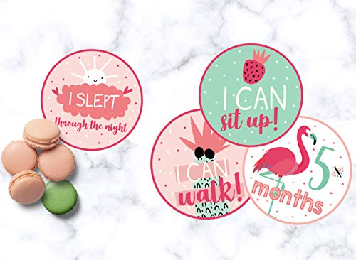 Baby Monthly Stickers Set of 20 Baby Milestone Stickers for Girls Perfect Baby Shower Gift by BebeTales Baby Girl Gifts on Every Baby Registry with All 12 Month Stickers