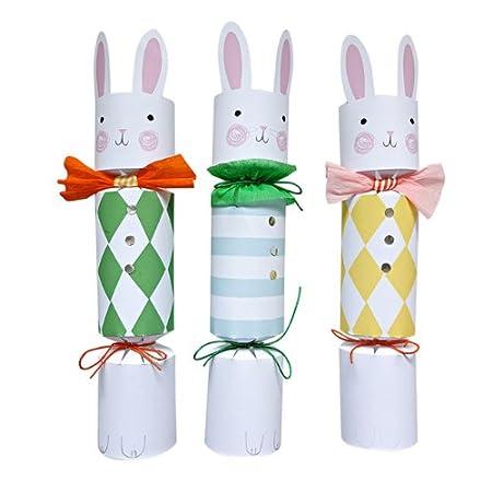 Meri meri make your own luxury easter bunny crackers 10 amazon meri meri make your own luxury easter bunny crackers 10 solutioingenieria Images