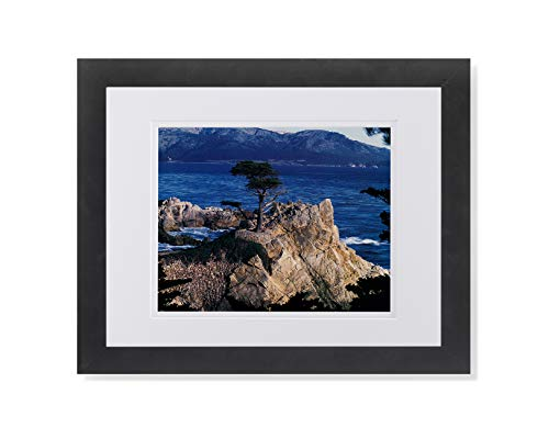 (The Lone Cypress Tree Pebble Beach Ocean Photo Wall Picture W/W Matted Framed Art Print)