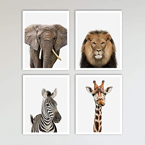 - 4 Piece Color Safari Zoo Animal Nursery Set - Elephant, Lion, Zebra & Giraffe Prints - Neutral Wall Decor, Baby Shower Gift & Kids Bedroom Animal Wall Decor 4 Piece Set, 11 x 14 inches each Unframed