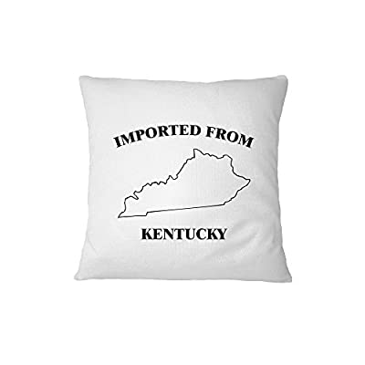 Imported From Kentucky Sofa Bed Home Decor Pillow Cover