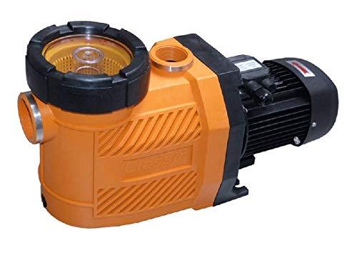 BEVO Hilpoltsteiner Typ Classic 13 Filterpumpe 13 m/³//h