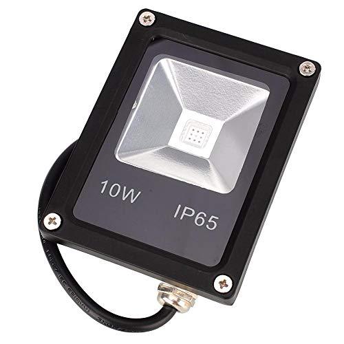 12V 10W Led Waterproof Flood Light