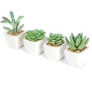 Taiyue Mini Flocked Artificial Succulent Plants Potted in Square Ceramic Planters,Set of 4 104