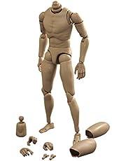 Figura de Acción Juguete Cuerpo Hombre de 1: 6