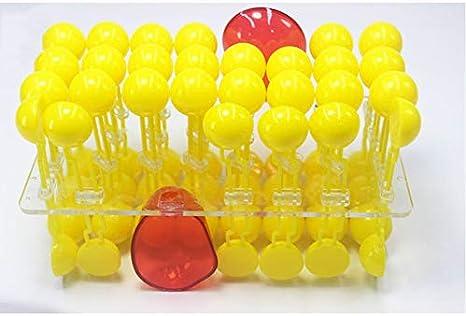 Modelo de flujo de membrana celular - Kit de modelo de ...