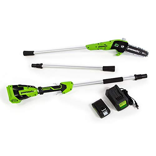 Greenworks 8-Inch 24V Cordless Pole Saw, 2Ah Battery, PS24B210