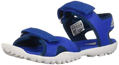 adidas outdoor SANDPLAY OD Kids Water Sports Shoe Sandal, Blue Beauty/Legend Marine/Grey one 1 Child US Big ()