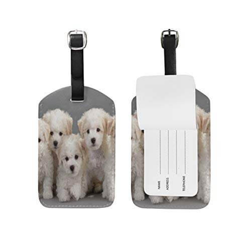 FunnyCustom Luggage Tags Bichon Frise Dog Travel ID Identifier for People (Luggage Frise Tag Leather Bichon)