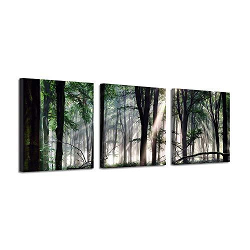 (Artwork Nature Landscape Picture Art: Sunlight & Forest Painting Print on Canvas)