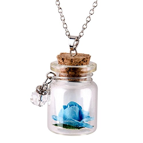 Botrong Glow in the Dark Flower Glass Tiny Wishing Bottle Vial Necklace Pendant Chain (Blue)
