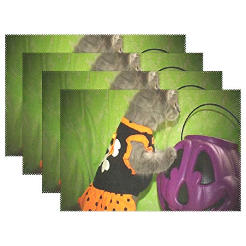 Heat Resistant Placemats for Kitchen Table Mats for Dinning Room,Halloween Kitty Animals Cats Washable Insulation Non Slip Placemat 12x18 inch -