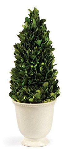 CC-Home-Furnishings-15-Preserved-Boxwood-Evergreen-Cone-Topiary-in-Beaded-White-Planter-Unlit
