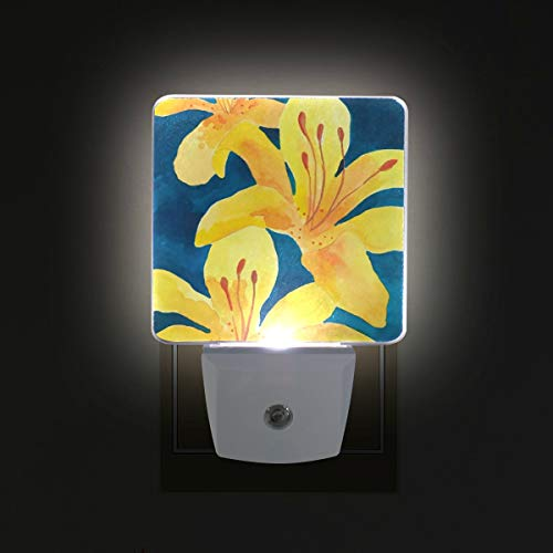 Tiger Lilies LED Night Lights with Auto Dusk to Dawn Sensor, Plug-in Warm White Lamp for Nursery Hallway Kids - Nursery Lily Tiger