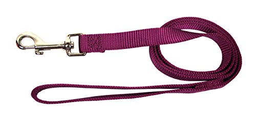 Image of Hamilton 6-Feet Long Single Thick Deluxe Nylon Lead with Swivel Snap, 5/8-Inch, Wine