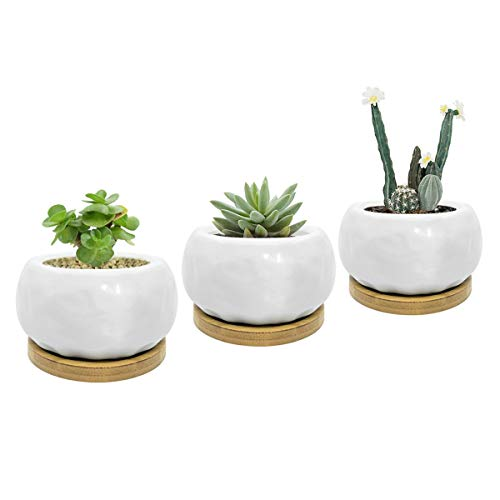 White Ceramic Textured Oval Shape Design Succulent Planter Pots with Drainage Holes and Free Bamboo Tray-Set of 3 ()