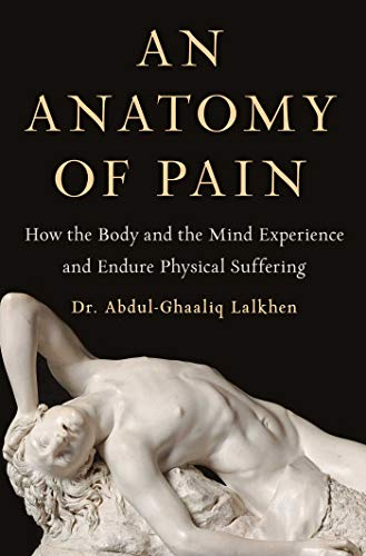 Book Cover: An Anatomy of Pain: How the Body and the Mind Experience and Endure Physical Suffering
