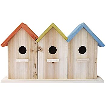 Amazon Com 23 Bees 3 Hole Bird House For Outside Indoors