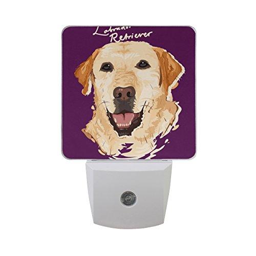 ALAZA LED Night Light with Smart Dusk to Dawn Sensor,Labrador Retriever Painting Plug in Night Light Great for Bedroom Bathroom Hallway Stairways Or Any Dark Room (Labrador Night Light)