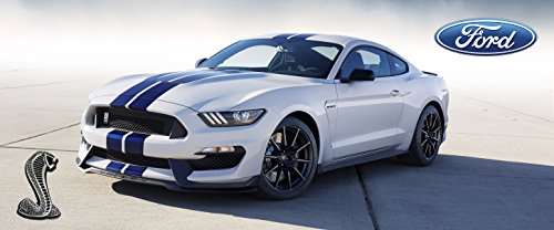 2016-ford-mustang-gt-350-poster-shelby-muscle-car