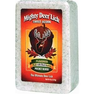 Mighty Deer Lick 22340 Acorn Salt Lick Block