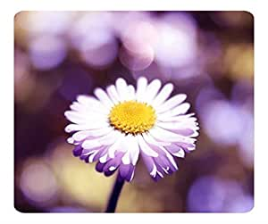 Decorative Mouse Pad Art Print Landscape and Plants Daisy The Lights Close Up
