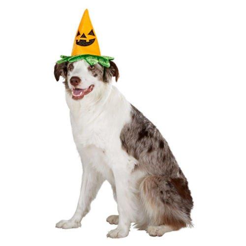 GREAT CHOICE DOG PUPPY CAT KITTEN PET PUMPKIN HAT HALLOWEEN COSTUME SMALL NWT]()