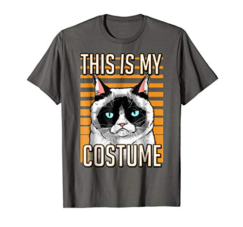Mens Grumpy Cat Halloween This Is My Costume Graphic T-Shirt 2XL Asphalt for $<!--$19.99-->