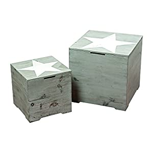 Rustic Cape Cod Star Decorative Furniture Trunks, Set of 2, Sustainable Wood, Quality Hardware, Driftwood Gray, Cubes…