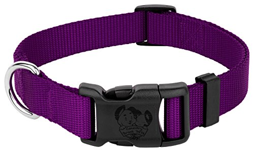 Image of Country Brook Petz | Vibrant 21 Color Selection | Deluxe Nylon Dog Collar (Purple, Large, 1 Inch Wide)