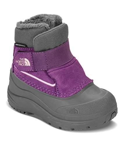 The North Face Toddler Alpenglow - Dark Gull Grey & Wood Violet - ()