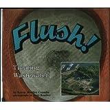 Flush!: Treating Wastewater (Carolrhoda Photo Books)