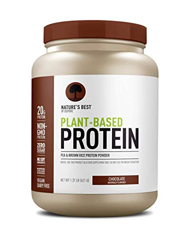 Nature's Best Plant Based Vegan Protein Powder by Isopure - Organic Keto Friendly, Low Carb, Gluten Free, 20g Protein, 0g Sugar, Chocolate 1lb (20 Servings)