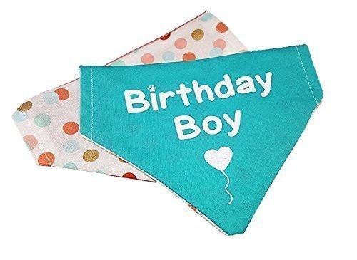 Birthday Boy reversible polka dot glitter dog bandana