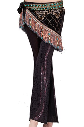 Coin Tribal Belly Dance (ZLTdream Women's Tribal Belly Dance Hip Scarf with tassel & copper Light)