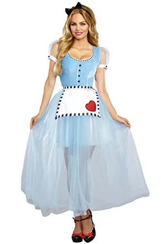 2016 Alice Costume Wonderland In (Dreamgirl Women's Alice Costume, Blue/White,)