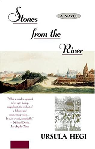 book cover of Stones from the River