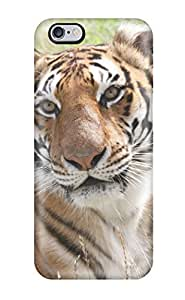 Amberlyn Bradshaw Farley's Shop For Iphone 6 Plus Premium Tpu Case Cover Tiger In Fields Protective Case 6097973K13439288