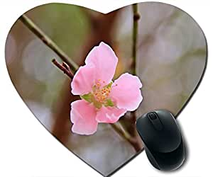 Vietnams Peach Blossom Mouse Pad Desktop Mousepad Laptop Mousepads Comfortable Office Of Mouse Pad Mat Cute Gaming Mouse Pad