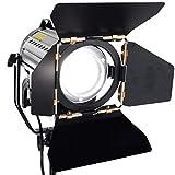 ASHANKS Wireless Remote Control Dimmable Spotlights LED150W LED Studio Fresnel Spot Light 3200-5500K for Camera Photo Video