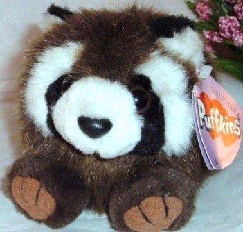 Puffkins Bandit The Raccoon