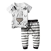 BIG ELEPHANT Baby Boys 2 Piece Cute Lion Short Sleeve Pants Clothing Set H79 Lion 0-3 Months
