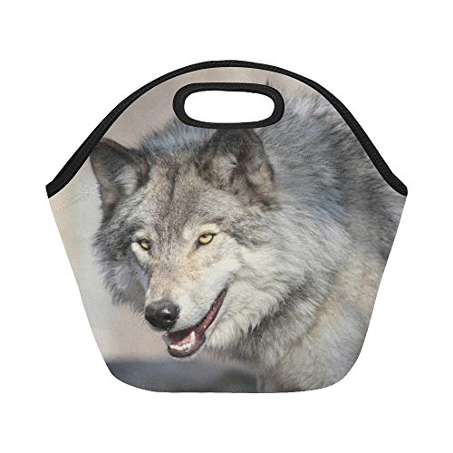 Insulated Neoprene Lunch Bag Wolf Forest During Autumn Large Size Reusable Thermal Thick Lunch Tote Bags For Lunch Boxes For Outdoors,work, Office, School