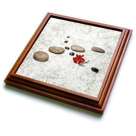 3dRose Alexis Photography - Objects Zen - Intersection of stones and pebbles, cluster of red rowan berries. Zen - 8x8 Trivet with 6x6 ceramic tile (trv_265666_1)