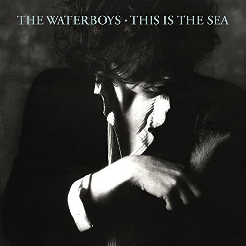 This Is the Sea (Deluxe Version) (The Best Of The Waterboys)