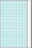 Pacon Grid Roll with 1 Inch Grid Rule – 34 1/2 Inch x 200 Feet, Office Central