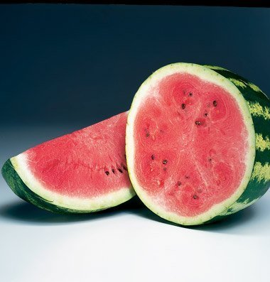 David's Garden Seeds Fruit Watermelon Crimson Sweet D2133 (Red) 100 Heirloom (Heirloom Watermelon Seeds)